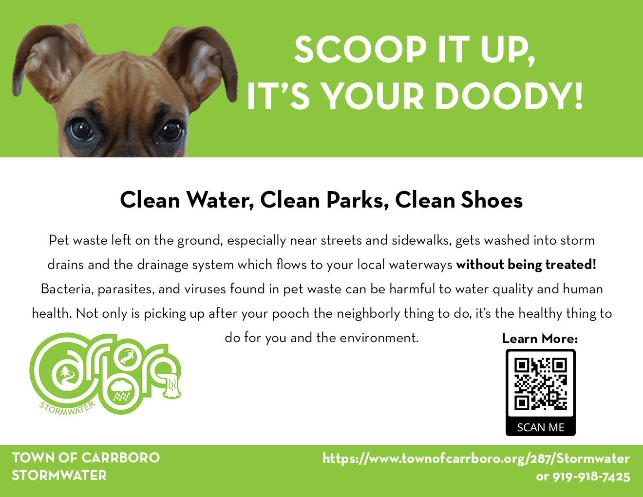 Pet Waste Flyer Feb 10